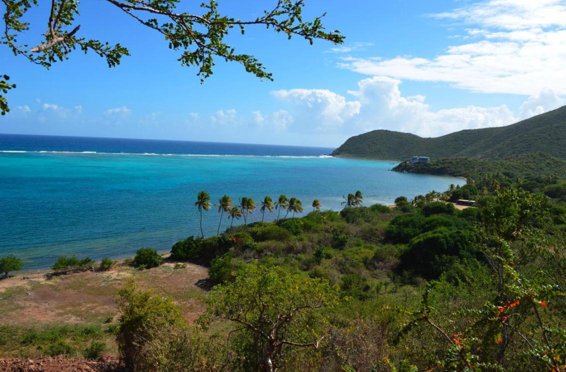 Mls St Thomas Virgin Islands